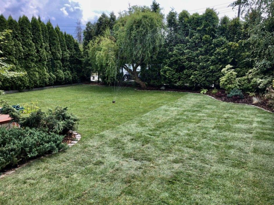 zakładanie ogrodów 29