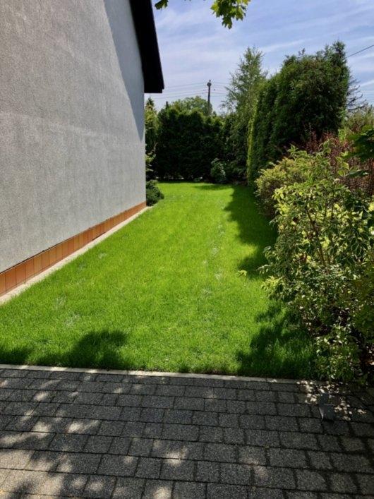 trawnik z rolki 4
